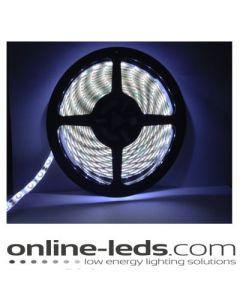 12V Led Cool White Led Strip Lights 5M SMD 3528