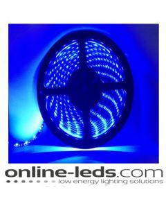 12V Led Blue Led Strip Lights 5M SMD 3528