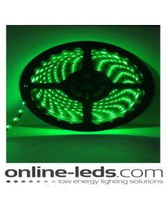 12V Led Green Led Strip Lights 5M SMD 3528