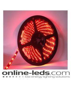 12V Led Red Led Strip Lights 5M SMD 3528