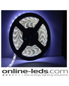 12V Led Cool White Led Strip Lights 5M SMD 5050